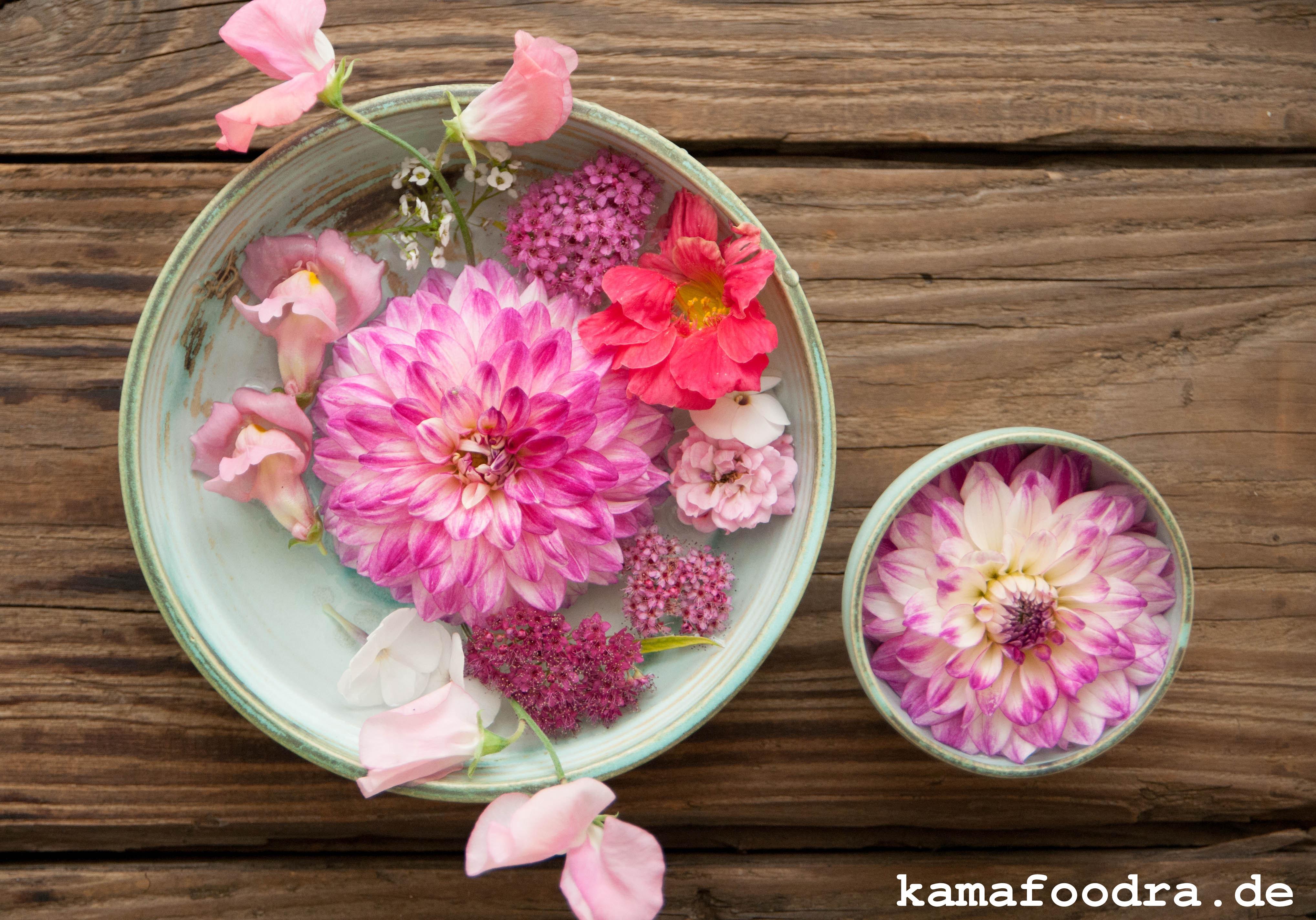 Blumen1 (1 von 1)
